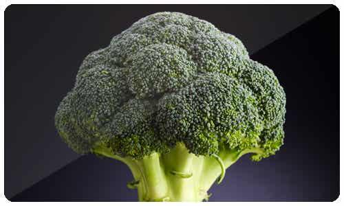 Broccoli and Pumpkin Recipes