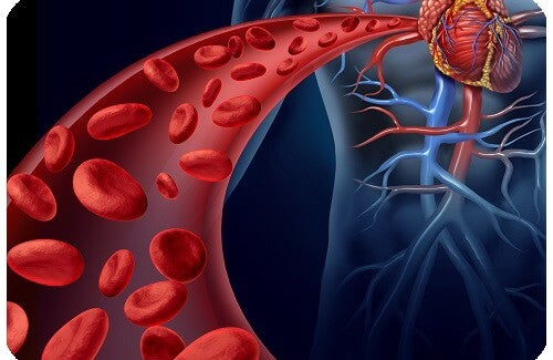 Control Hypertension with Natural Remedies and Good Habits