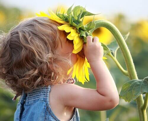 Young kid smelling a sunflower