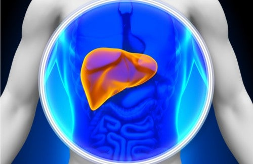 How to Care for Your Liver