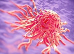 Cancer1-500x325