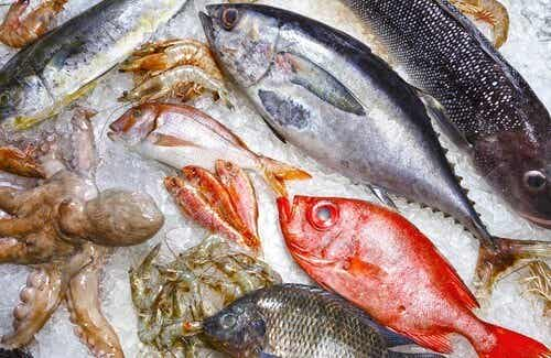 5 Types of Fish That You Should Avoid