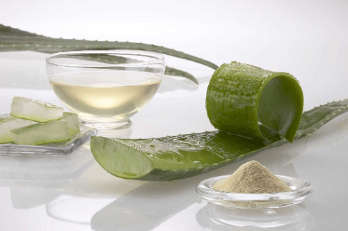 Aloe vera is good for acne scars and skin health.