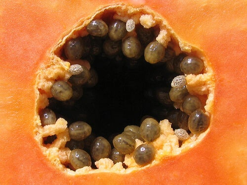 Papaya seeds.