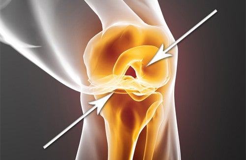 How to Quickly Regenerate Damaged Cartilage