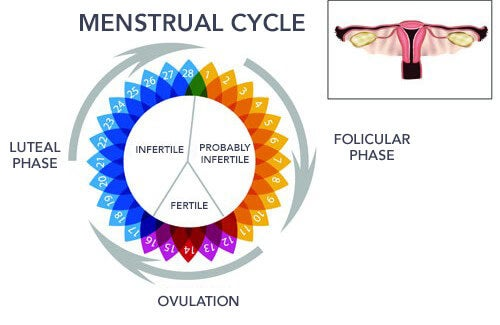 Irregular Menstruation: Why Does It Happen?