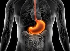 cure-gastritis-500x325