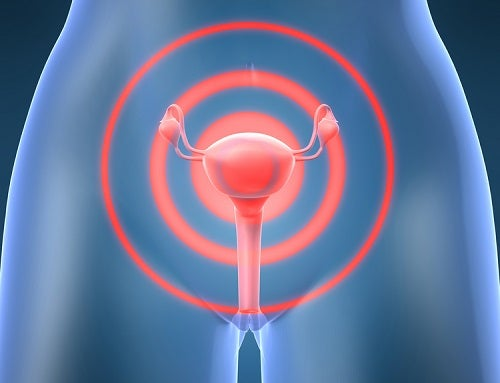 Uterus emiting signals of possible cancer