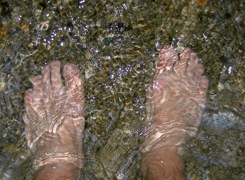 Feet bathing in water.