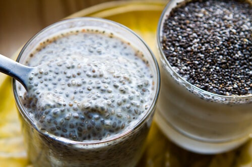 Lose Weight by Including Chia in Your Diet
