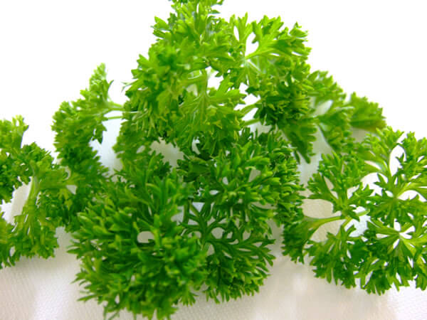 parsley to cure a sty