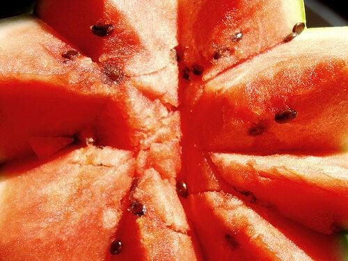 The Watermelon Diet