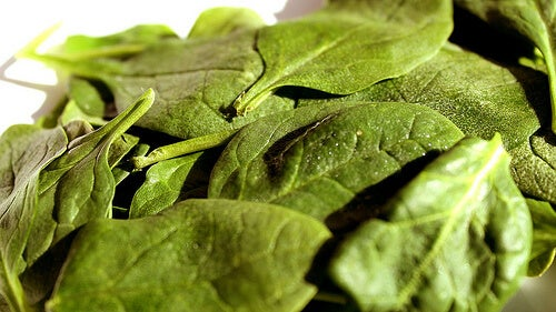 Spinach is useful for dizziness