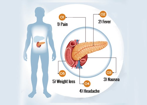 6 Symptoms Of Pancreas Problems Step To Health