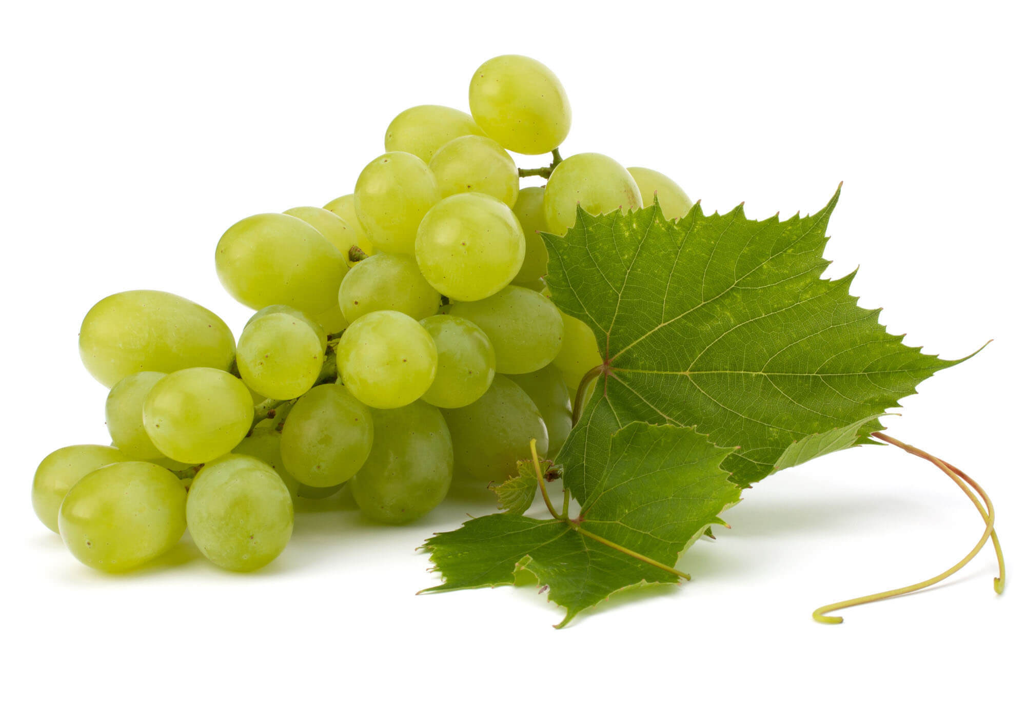 Eating grapes every day can be good and green grapes have less sugar than red