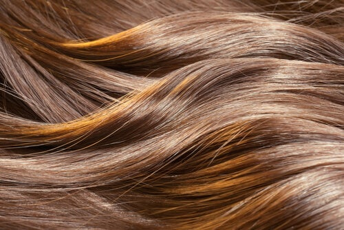You can see the health of your hair in its appearance.