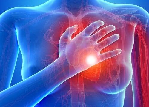 Symptoms of the Main Cardiac Diseases in Women