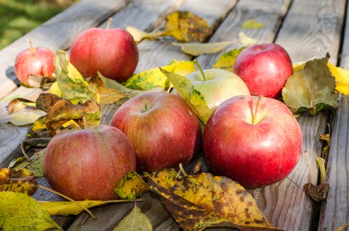 eating apples to soothe varicose vein pain