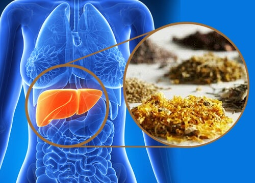 Medicinal Herbs to Cleanse Your Liver