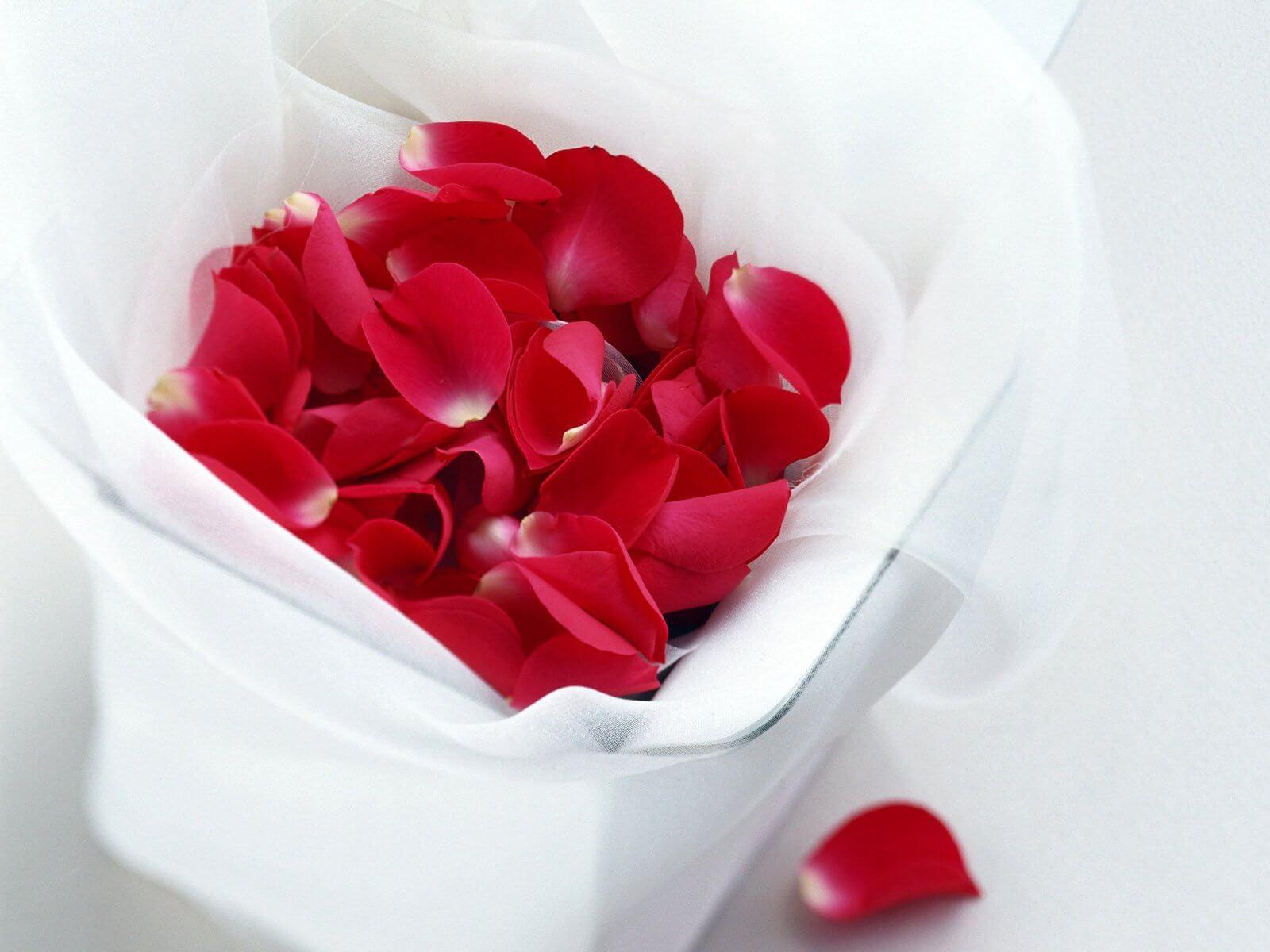 Rose petals for rejuvenating your eyes