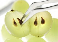 grape-seeds-2