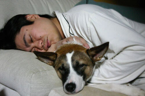A man sleeping with a dog.