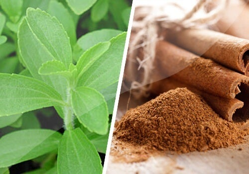 Cinnamon and Stevia Remedy to Regulate Sugar