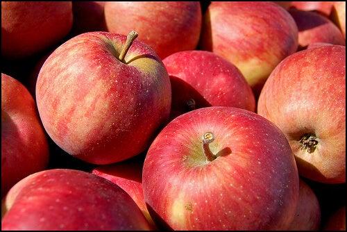 apple tom-gill