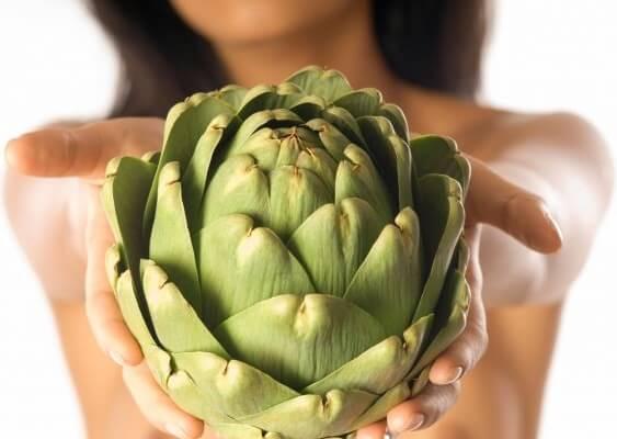 artichoke for losing weight