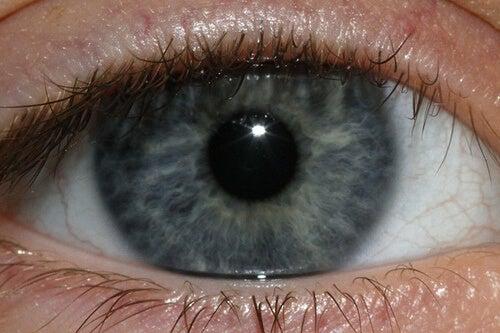 blue eye-Jenn-Durfey