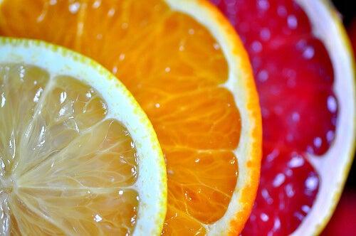 citrus fruits-veronicasheppard