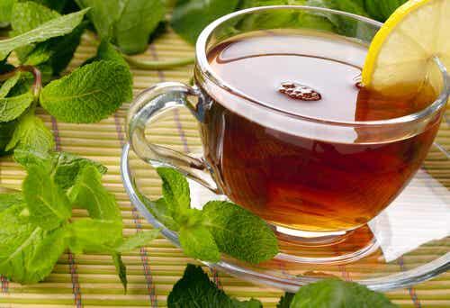 Medicinal Plants to Relieve Intestinal Discomfort