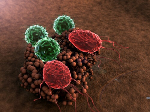 5 Symptoms of a Weakened Immune System