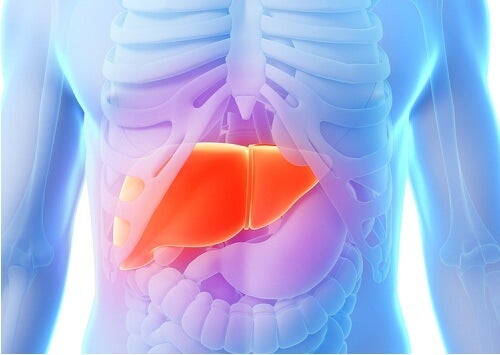 5 Foods that Help Clean Your Liver