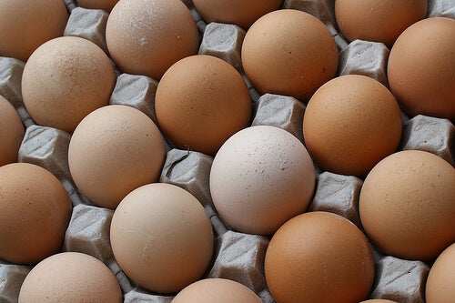 Some eggs in a tray.
