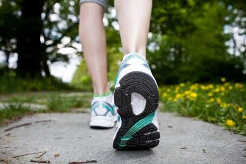 Great Tips to Lose Weight by Walking
