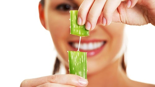 Aloe vera is good to increase hair volume