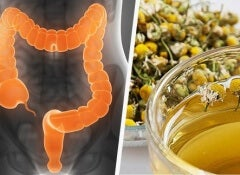 Naturally cleanse the colon