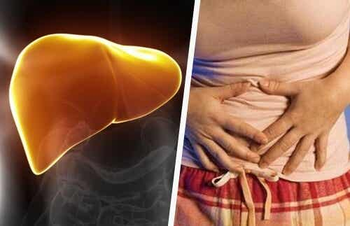 Indicators of Liver Problems and How to Fight Back