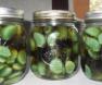 Vinegar honey garlic to treat illnesses