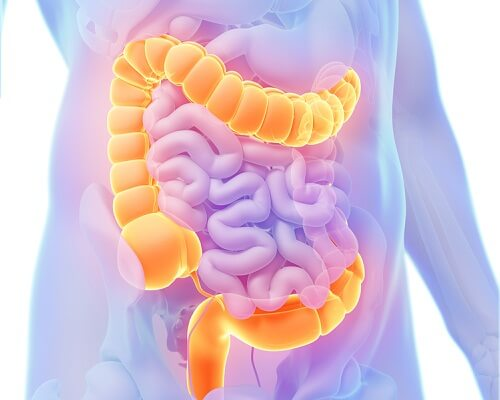 Colon may be causing your right abdominal pain