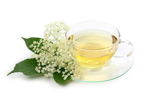 cup of elderflower tea, and elderflower, a medicinal plant