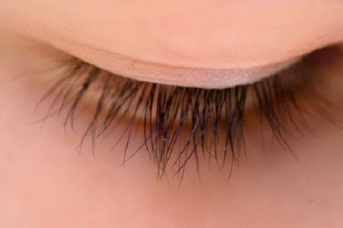 Home Remedies to Make Your Eyelashes Grow