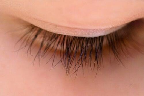 perfect eyelashes-2