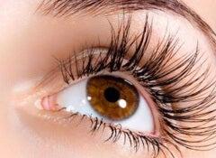 eyelashes-3