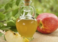 1 apple cider vinegar