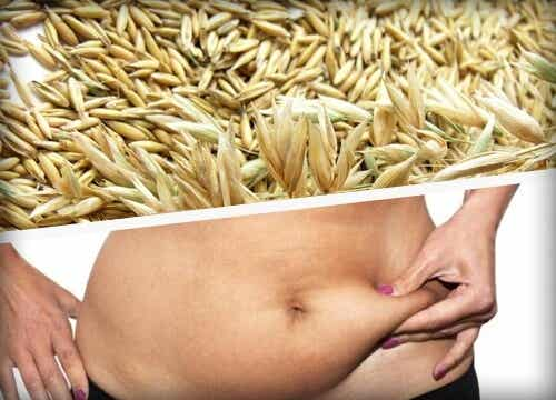 Top 3 Cereals and Grains for Weight Loss