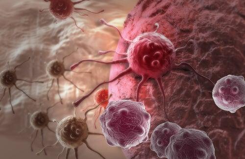 항암효과가 있다