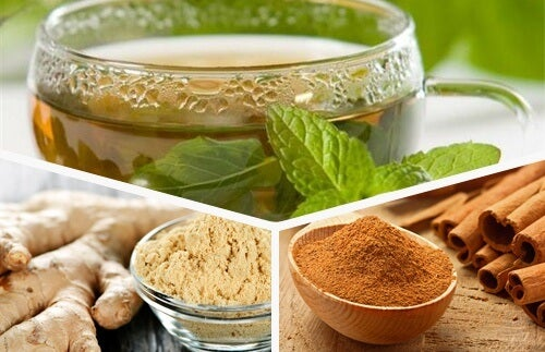 Renew Your Body Each Day with Green Tea, Ginger and Cinnamon