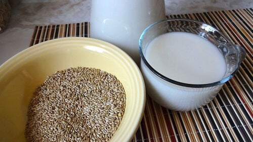 Lose Weight with Bird Seed Milk